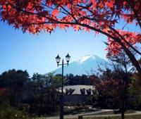 日本富士山下