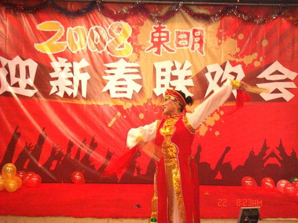 《东明2008表彰大会》背景板设计