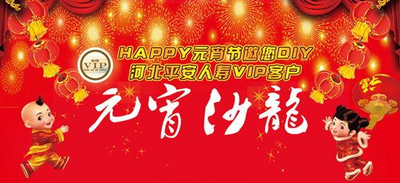 2009中国平安人寿河北分公司VIP客户共...